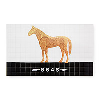 Personalized House Sign - 5 Av/59 St - Horse