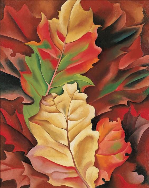 """Georgia O'Keeffe, """"Autumn Leaves, Lake George, N.Y."""" (1924)"""