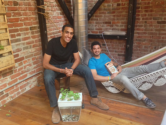 Nikhil and Alejandro of Back to the Roots | UncommonGoods
