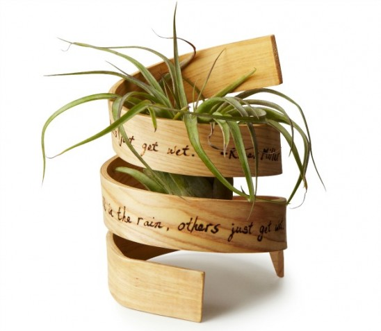 Inspiration Bent Wood Planter | UncommonGoods