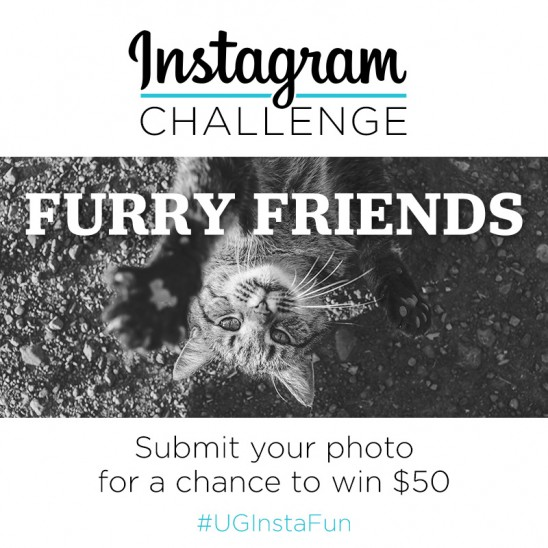Instagram Challenge | Furry Friends | #UGInstaFun | UncommonGoods
