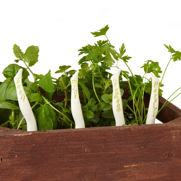 Can-Can Herb Markers | UncommonGoods