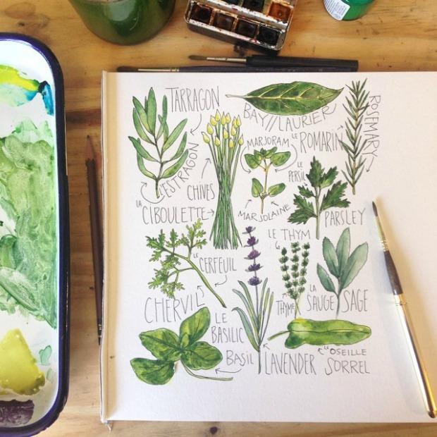 Fresh Herbs | Alyson Thomas