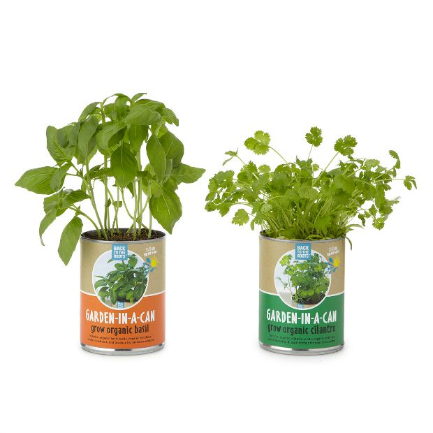 Garden in a Can | UncommonGoods