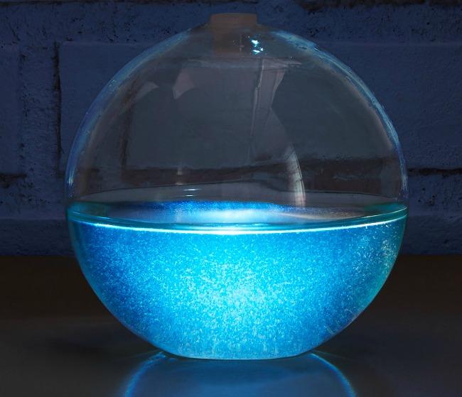 Bioluminescent Mini Aquarium | UncommonGoods