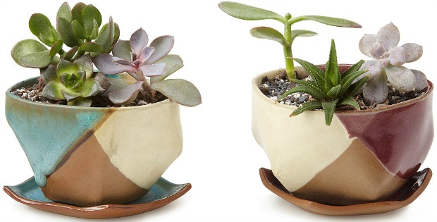 Mauna Planter and Dish | UncommonGoods
