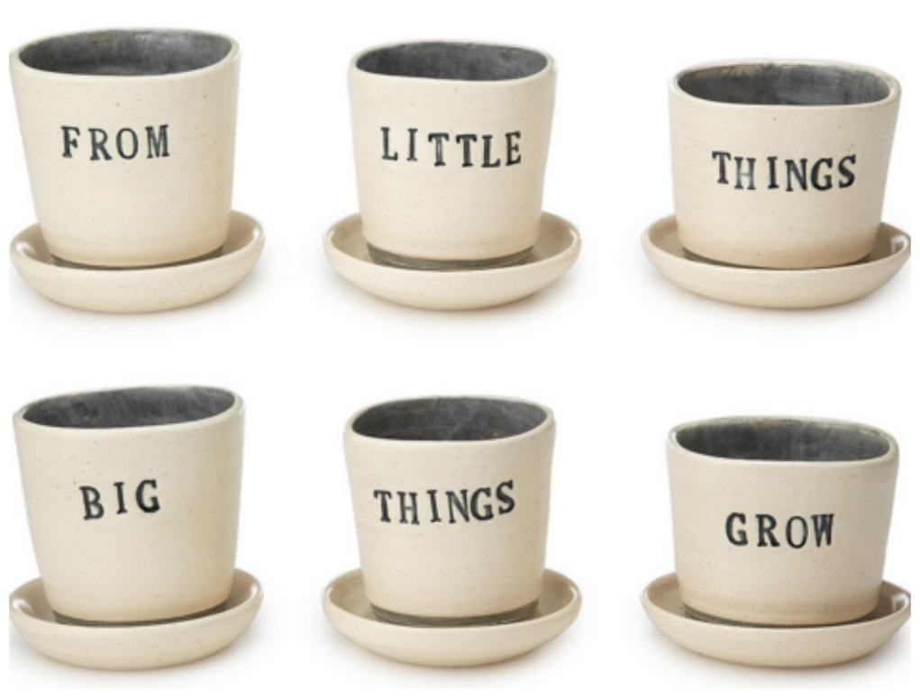 From Little Things Planter | UncommonGoods