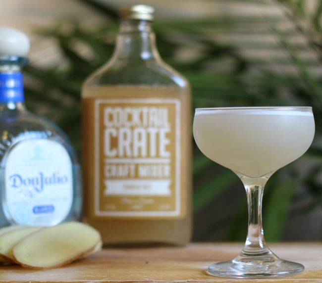Abeja Cocktail | UncommonGoods