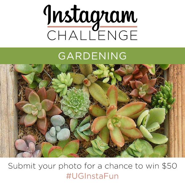 Instagram Challenge | Gardening | UncommonGoods