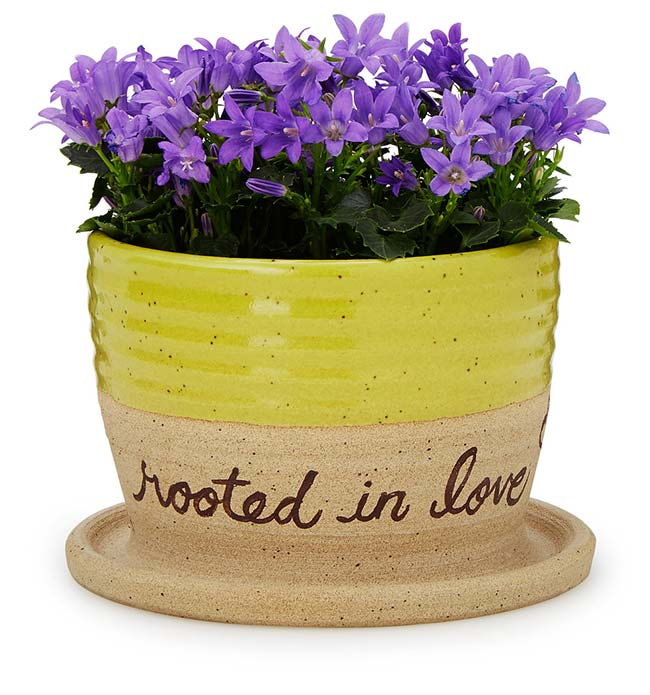 Rooted in Love Planter | UncommonGoods
