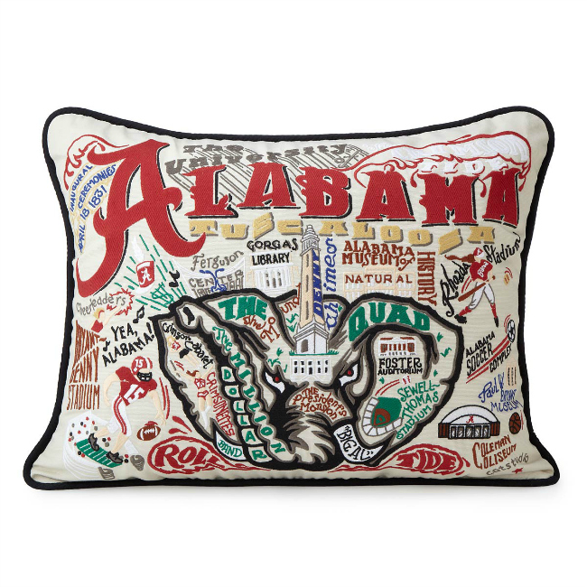 Hand Embroidered College Pillow