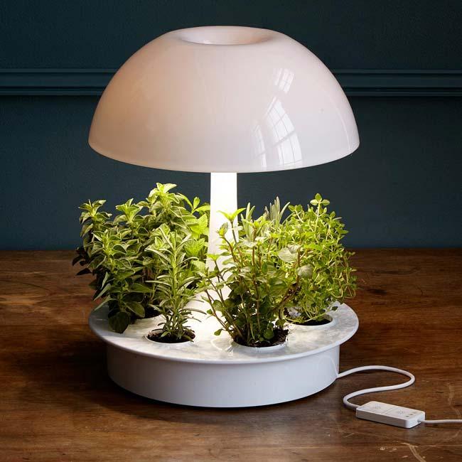 Ambienta Grow Lamp | UncommonGoods