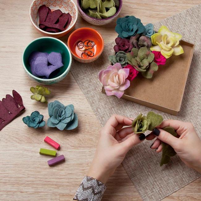 Felt Succulents Kit - UncommonGoods