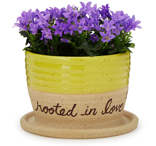 Rooted in Love Planter - UncommonGoods