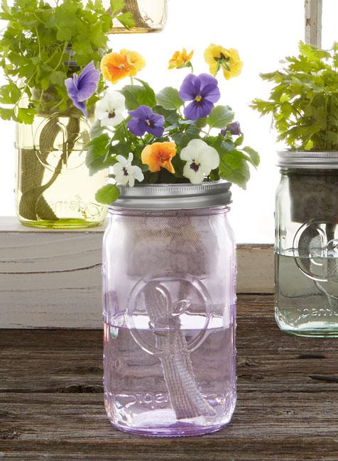 Mason Jar Indoor Flower Garden - UncommonGoods