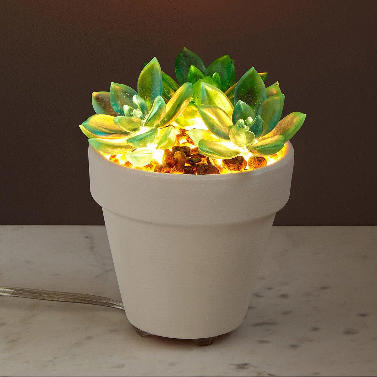 Let It Glow Succulent Lamp | UncommonGoods