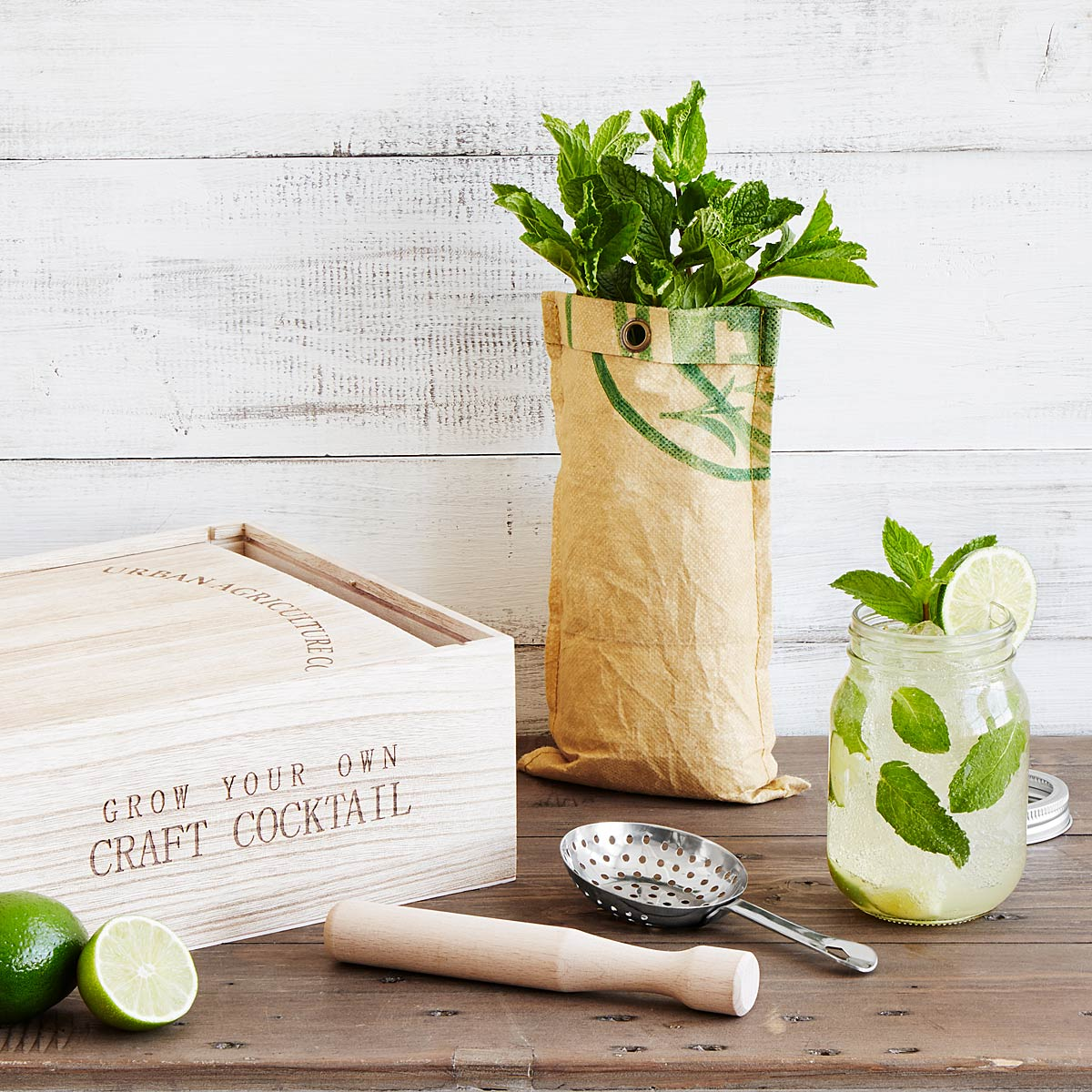 Grow & Craft Mint Mojito Kit | UncommonGoods