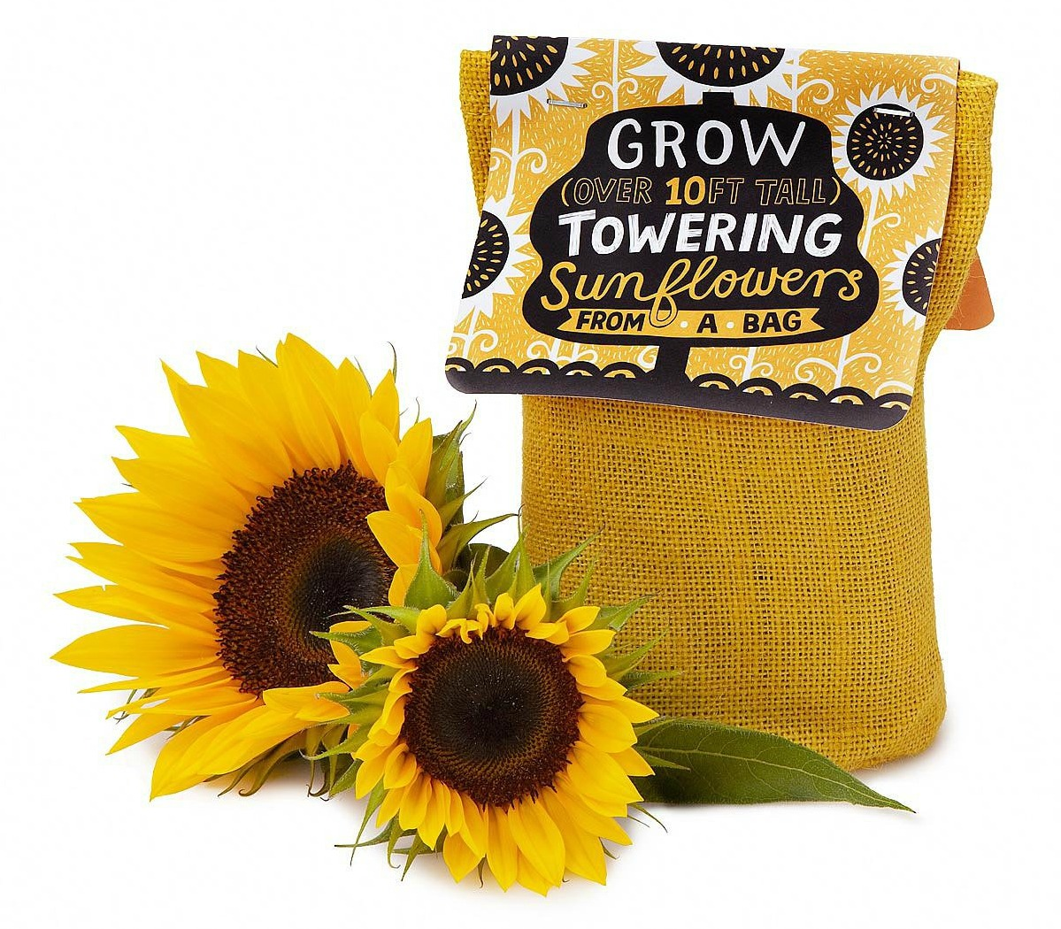 Sunflower in a Bag Grow Kit | UncommonGoods