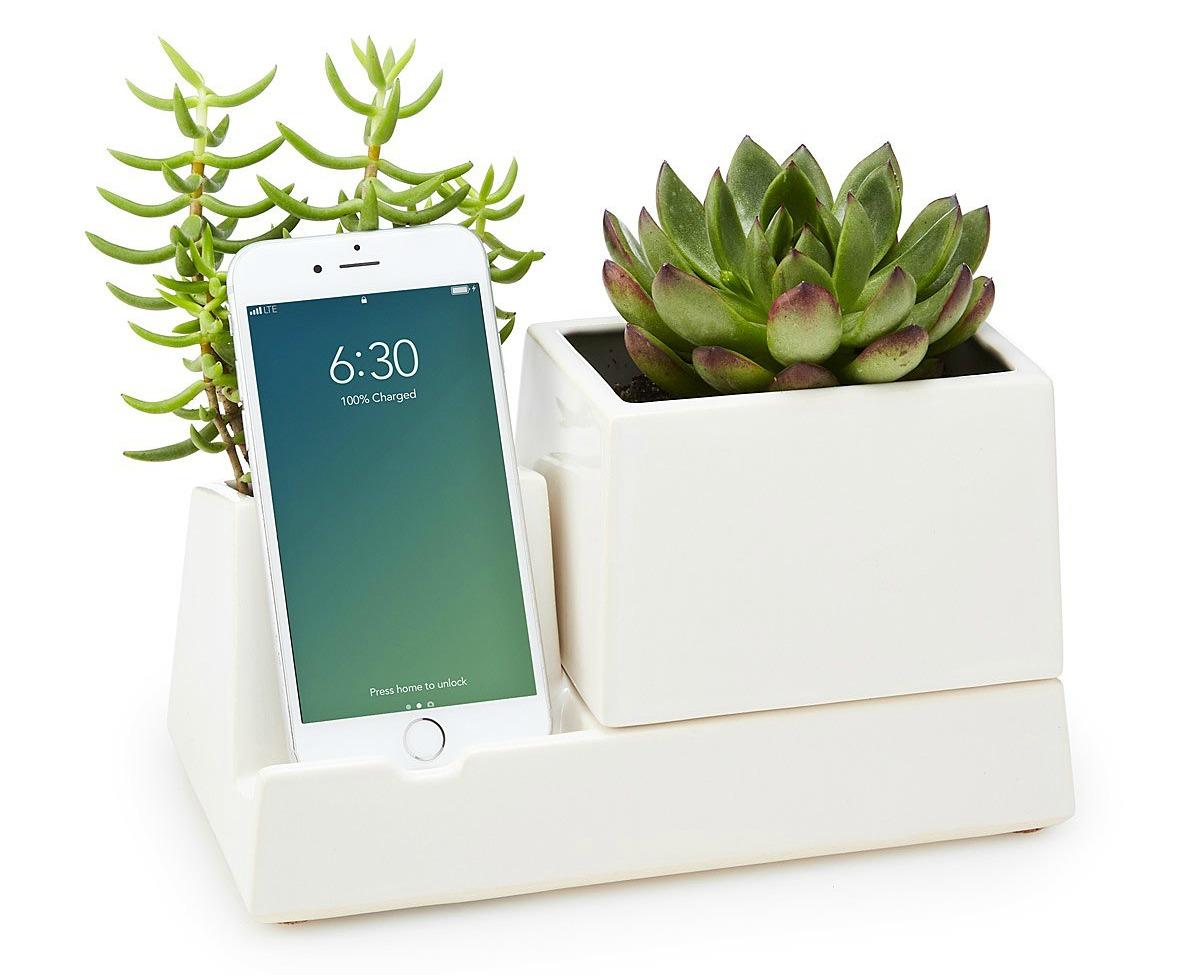 Smartphone Valet Planter | UncommonGoods
