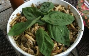 Alfresco Dining: Pistachio Pasta