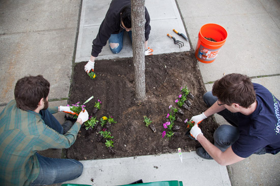 Planting flowers on Earth Day | UncommonGoods