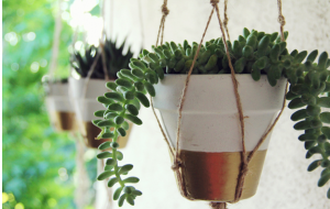 6 DIY Projects For Your Home Sweet Home