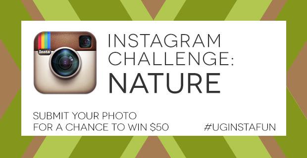 Instagram Challenge: NATURE