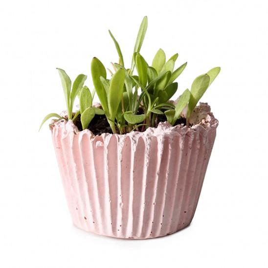 DIY Cupcake Planter