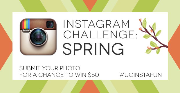 The current Instagram Challenge theme is SPRING | UncommonGoods