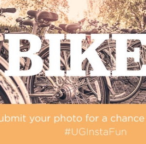 Instagram Challenge: Bicycles
