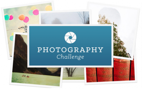 Photography Challenge | UncommonGoods