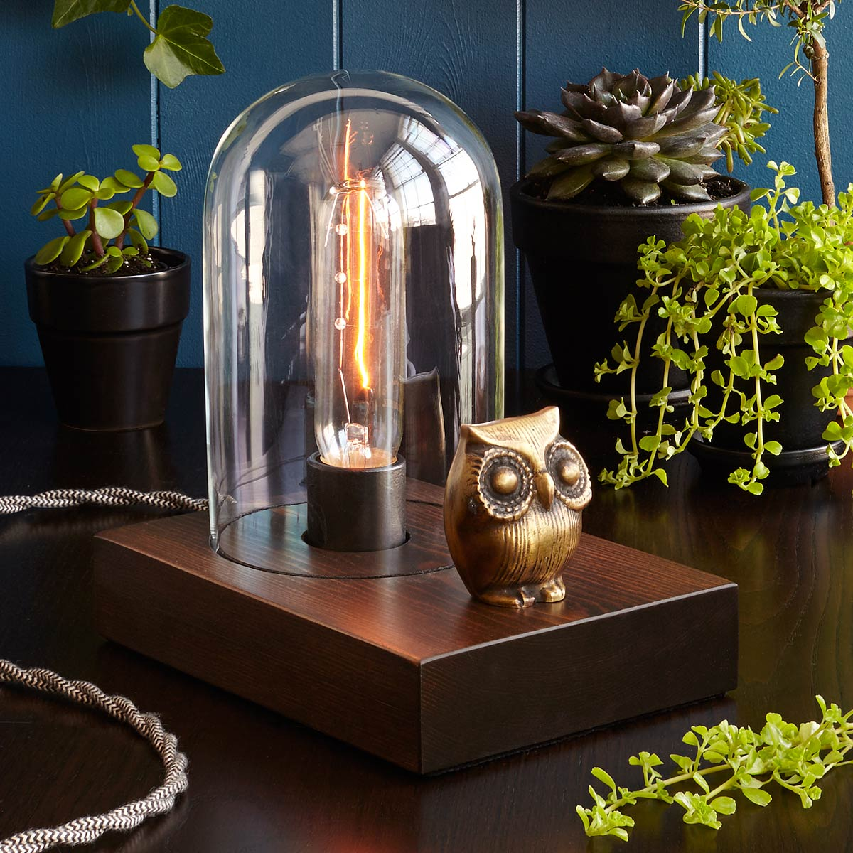 Mr. Owl Touch Lamp | UncommonGoods