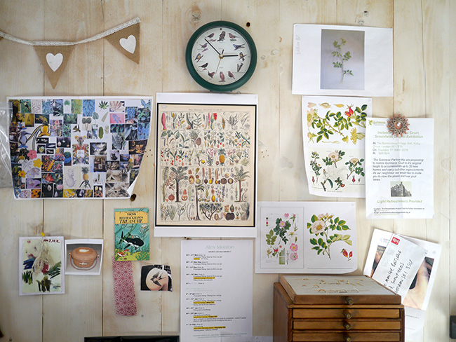 Studio Walls