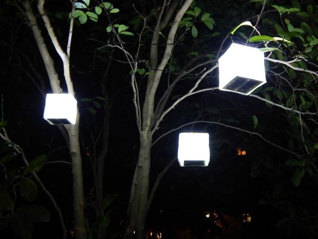 SolarPuffs in Trees
