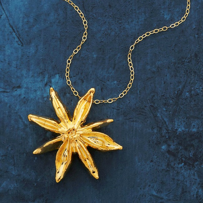 Dipped Star Anise Foodie Necklace - UncommonGoods