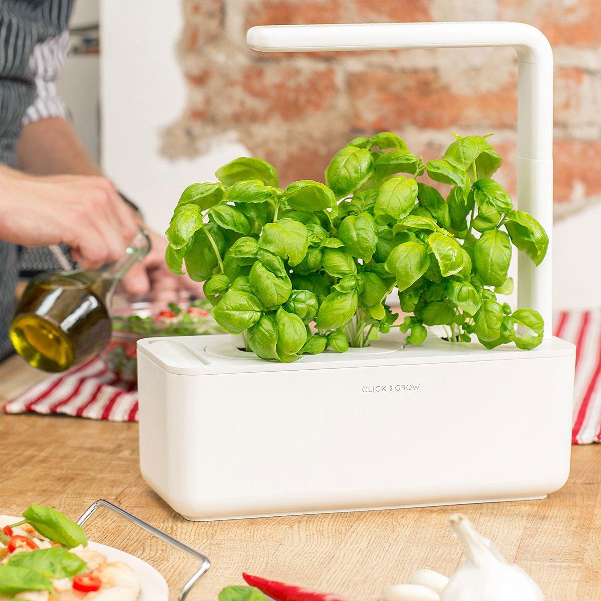 Smart Garden Grow Kit | UncommonGoods