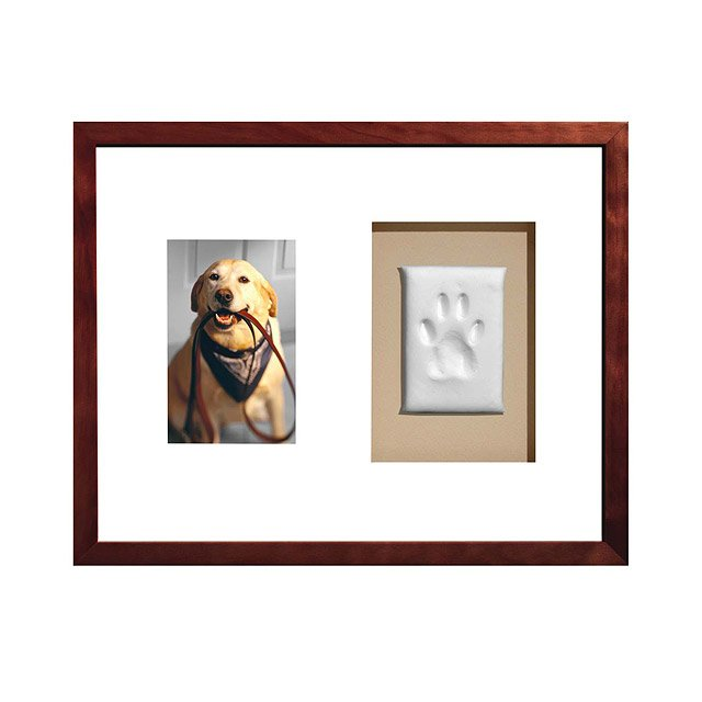 Paw Prints Keepsake Frame Dog Picture Frame Uncommongoods