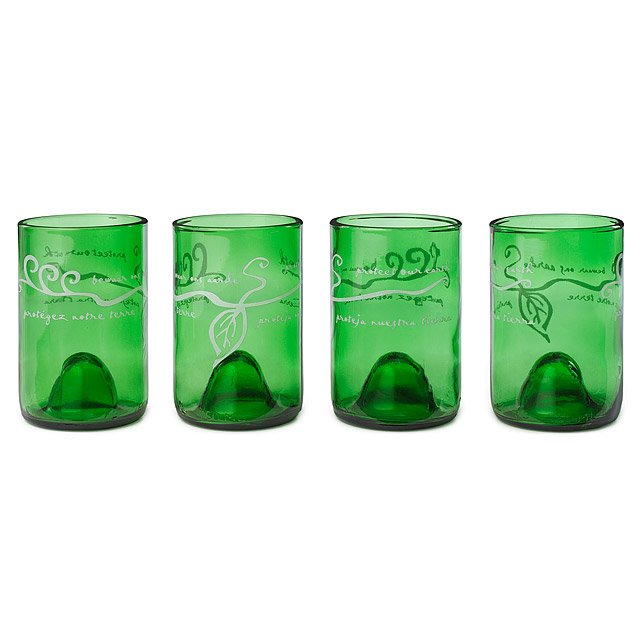 Protect Our Earth Glasses - Set of 4