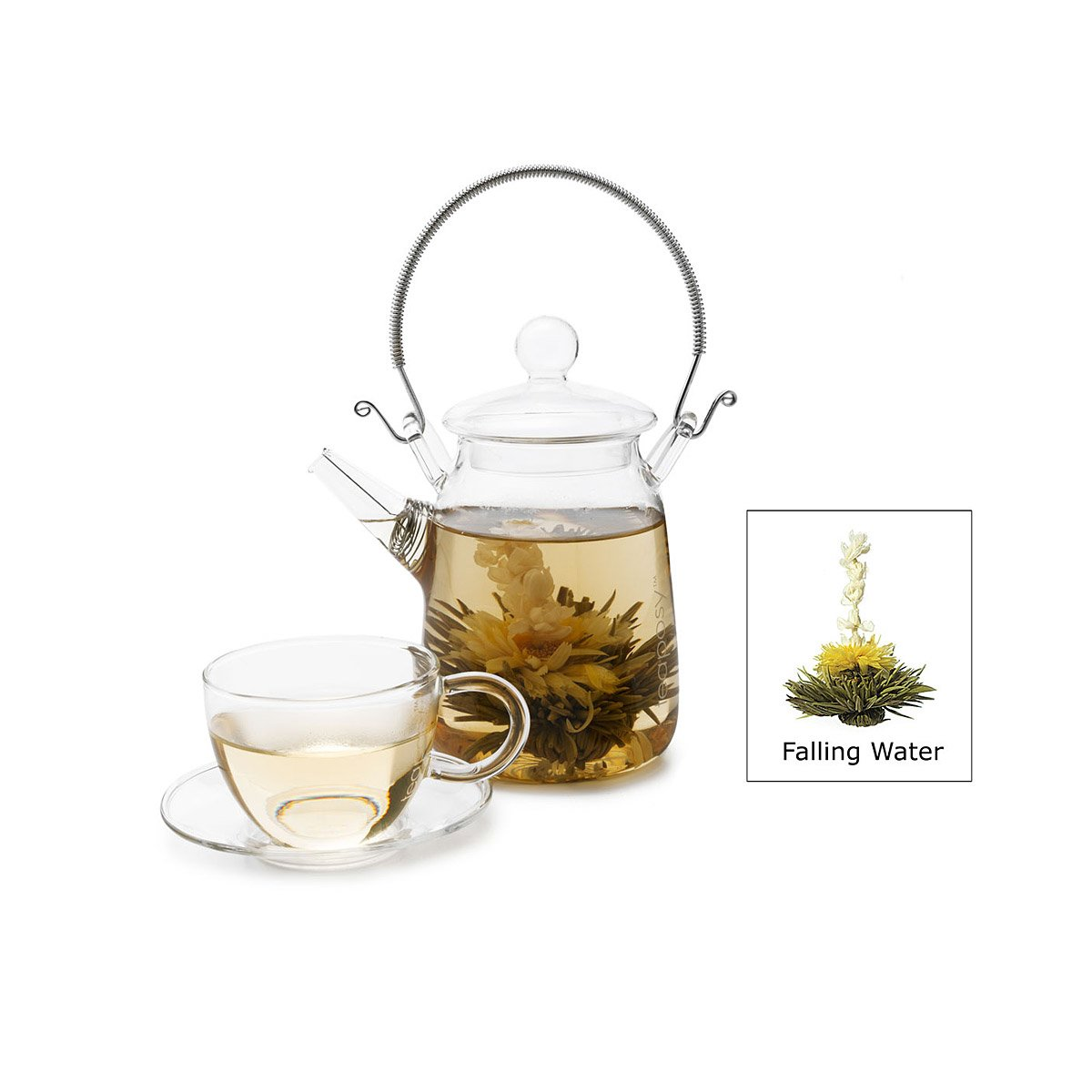 Blooming Tea Set Medley Assorted Teas Teaposy Glass Teapot And