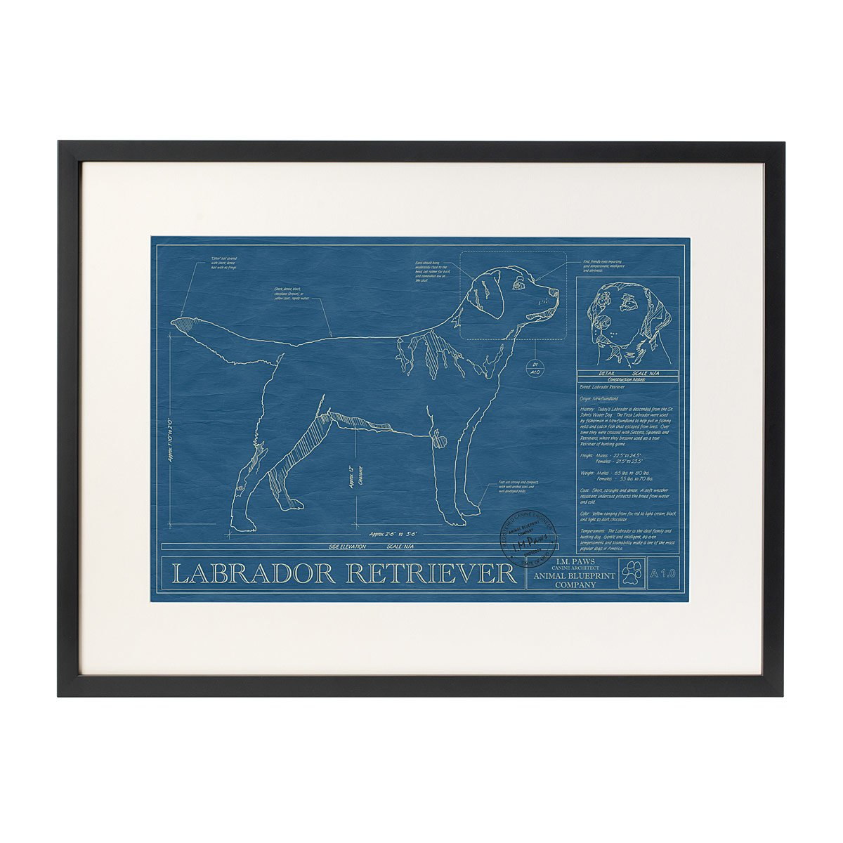 Dog blueprints framed wall art dog breeds uncommongoods dog blueprints 1 thumbnail malvernweather