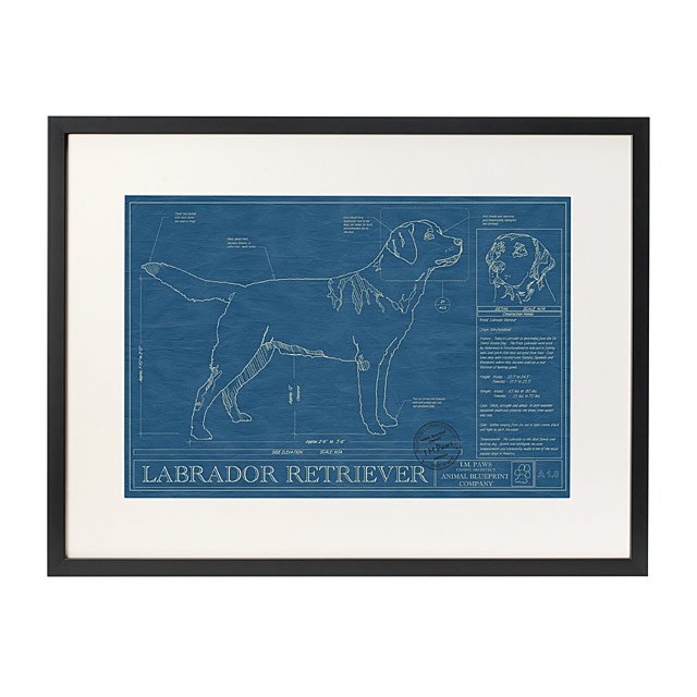 Dog blueprints framed wall art dog breeds uncommongoods dog blueprints malvernweather Choice Image