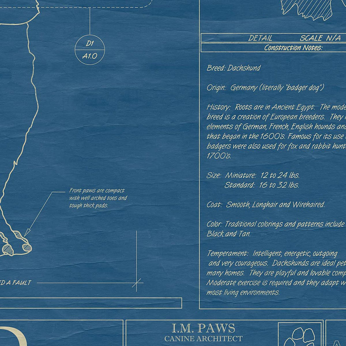 Dog blueprints framed wall art dog breeds uncommongoods dog blueprints 4 thumbnail malvernweather Image collections