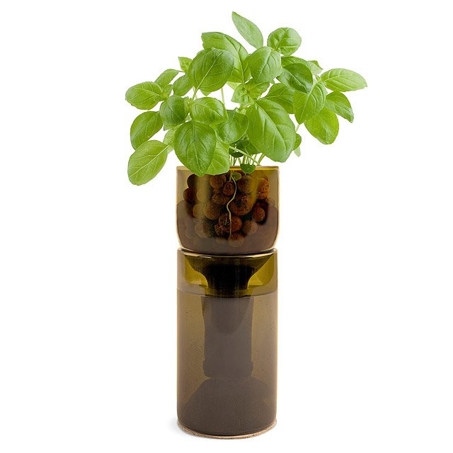 GrowBottle | Indoor Herb Garden Kit, Wine Bottle Planter ...