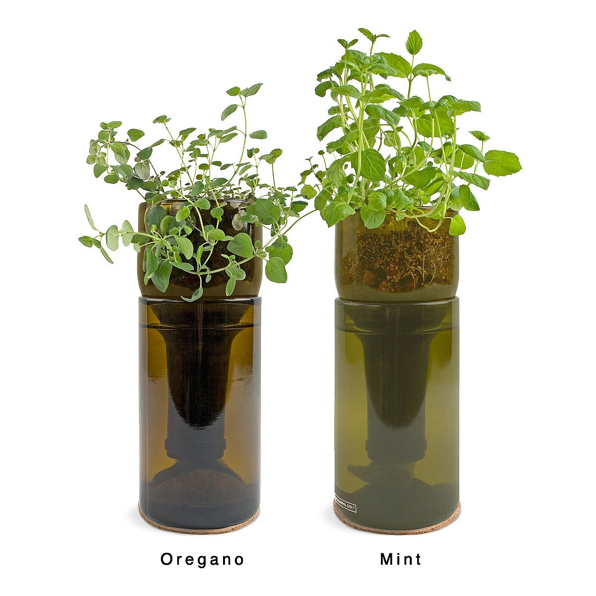 Herb Planter Growbottle  Indoor Herb Garden Kit Wine Bottle Planter