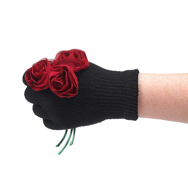 Bouquet of Flowers Gloves