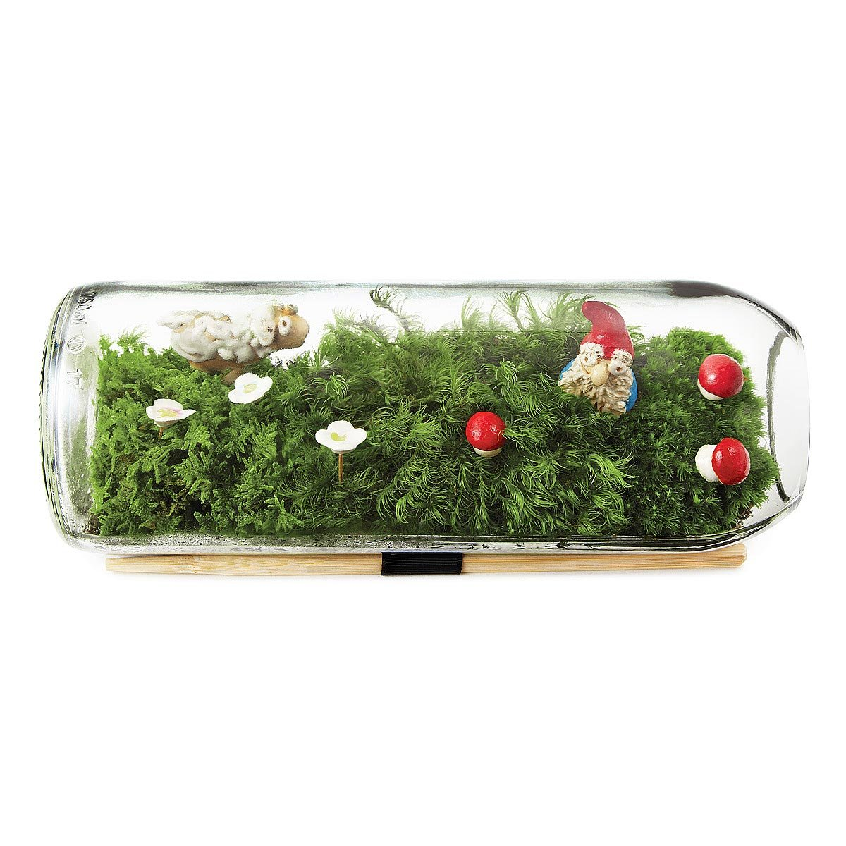 worksheet Terarium moss terrarium bottle glass gift uncommongoods 3 thumbnail