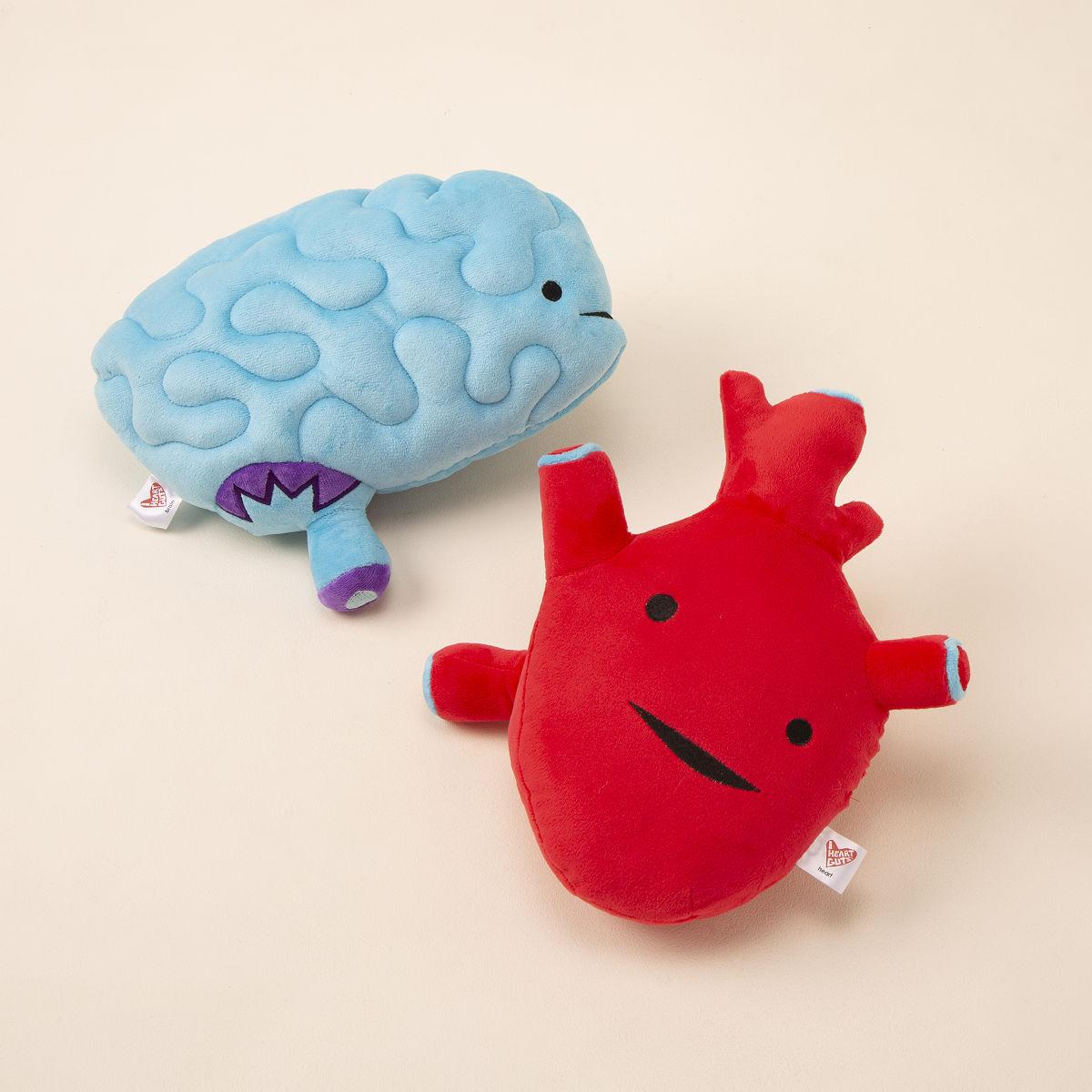 Plush Organs | Brain, Heart, Kidney, Uterus Toy | UncommonGoods