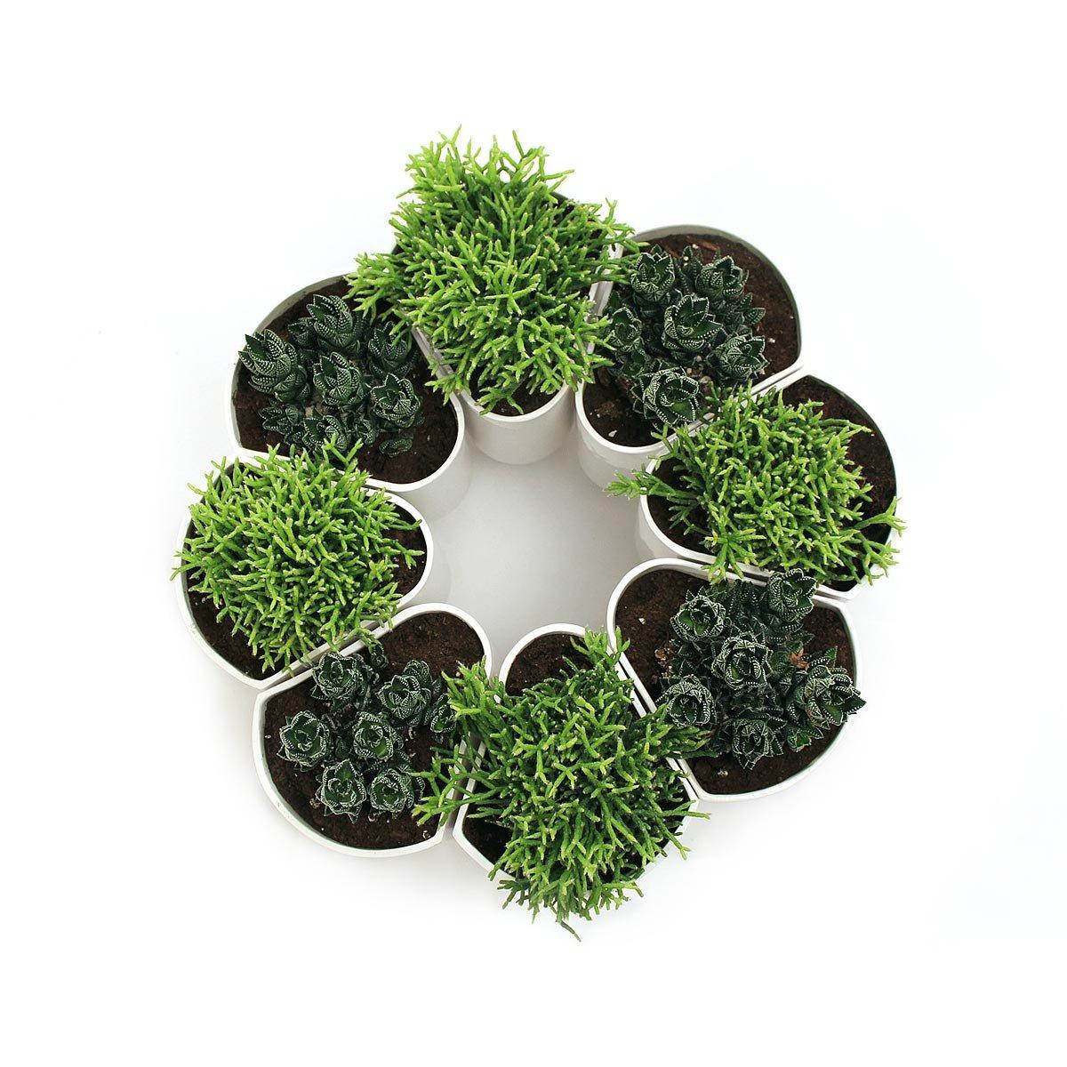 ceramic modular planter  modern stoneware flower pot indoor  - ceramic modular planter  thumbnail