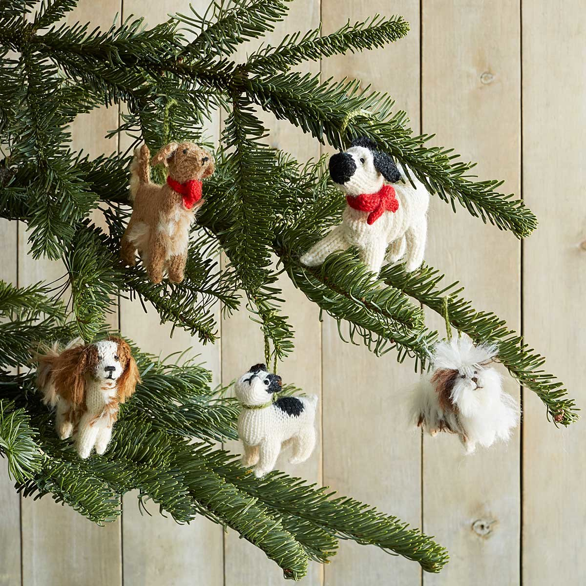 Gifts for Pet Lovers, Unique Pet Gifts | UncommonGoods