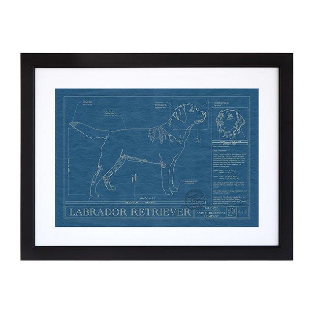 Large dog blueprints framed animal wall art uncommongoods large dog blueprints malvernweather Images